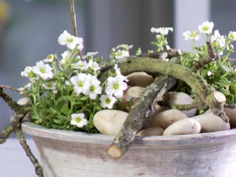 Ingetogen creatie met kiezelstenen green your day - Tuin decoratie met kiezelstenen ...